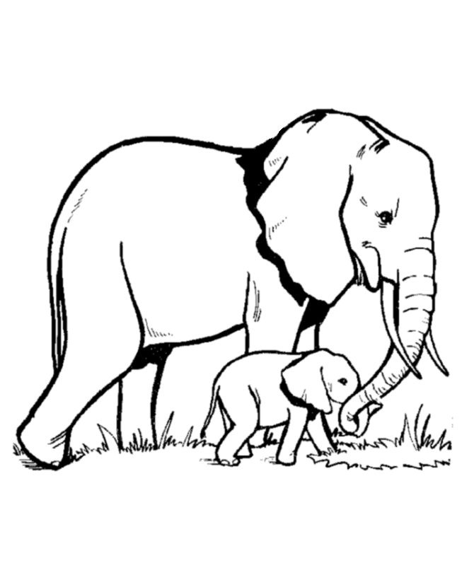 Silhouette at getdrawings com. Elephant clip art black and white banner black and white stock