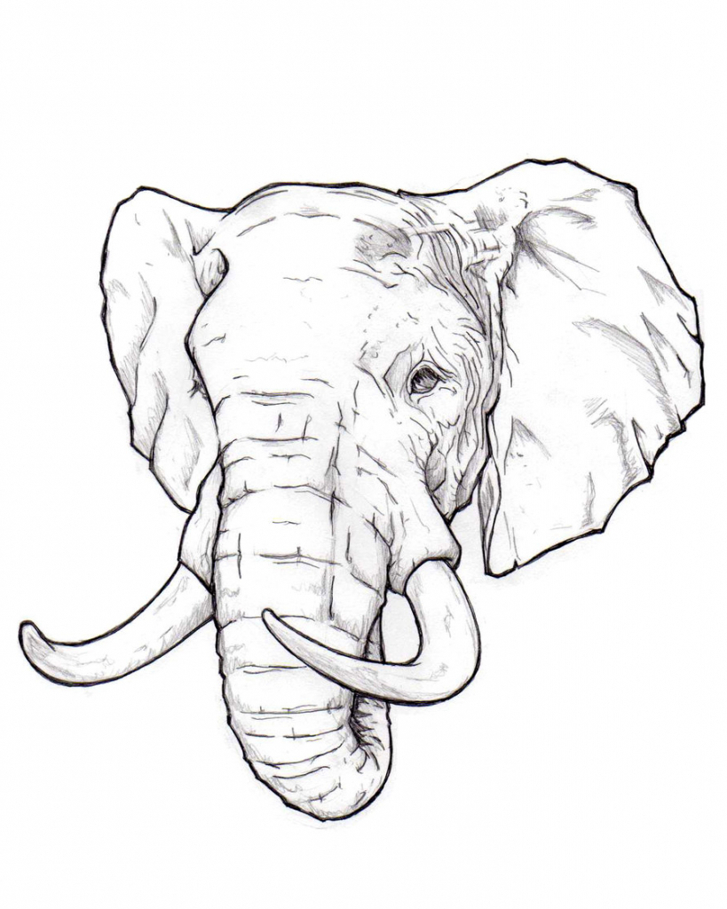 Drawing at getdrawings com. Elephant clip art realistic banner library download