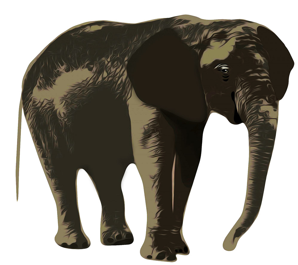 Elephant clip art realistic banner library