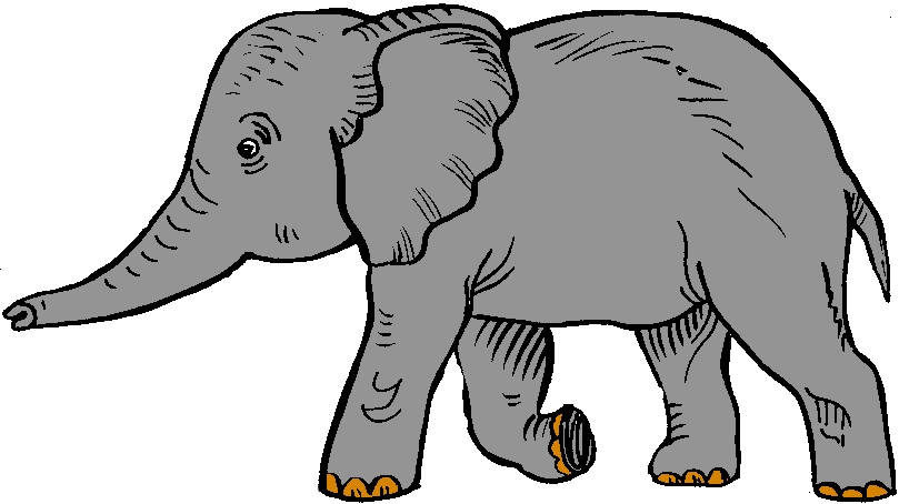 Elephant clip art realistic. Image of indian clipart