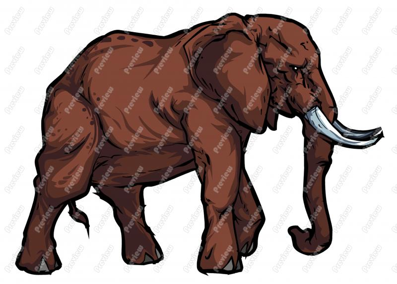 Character royalty free clipart. Elephant clip art realistic vector freeuse library
