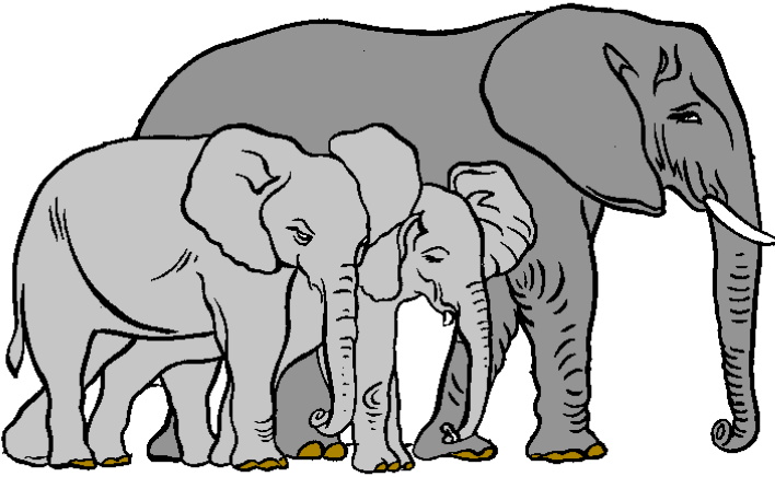 Elephants and other folios. Elephant clip art realistic banner freeuse download