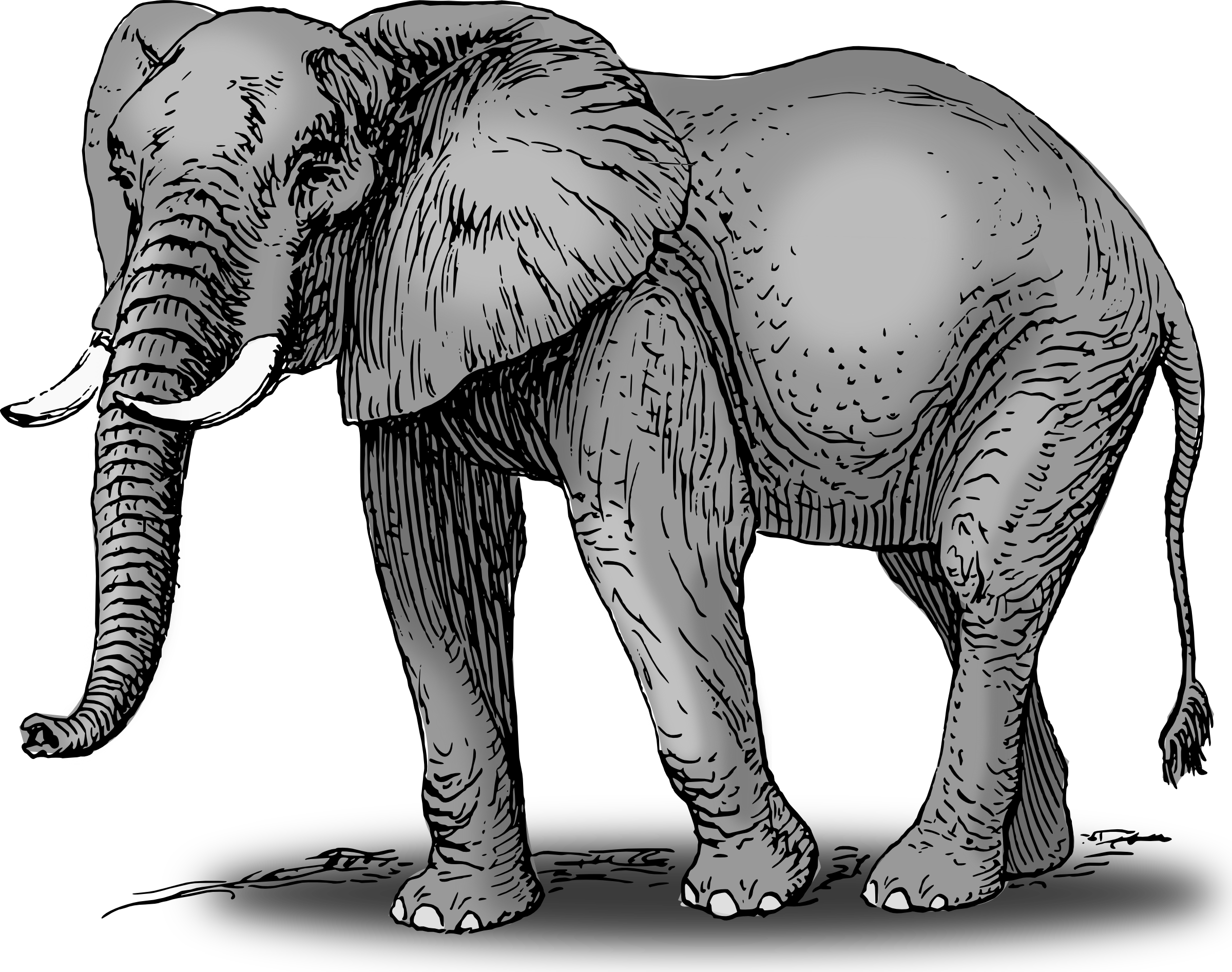 elephant clipart god