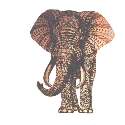 Elephant mandala png. Via tumblr discovered by
