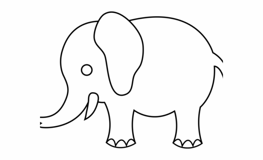 Elephant muzzle. Download for free png