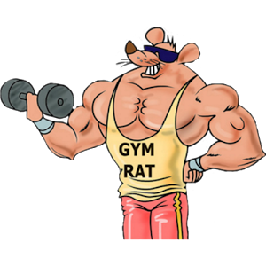 Energy clipart gym. To or not the