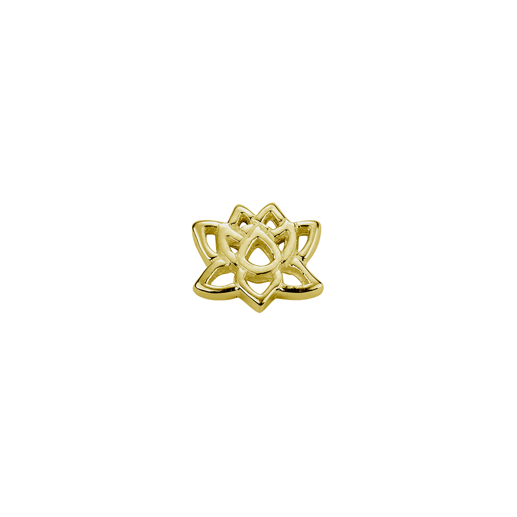 Enlightenment drawing lotus. Gold charm stow lockets