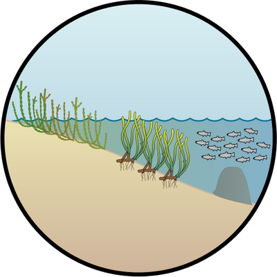 Environment vector ecosystem. Index of ress tice