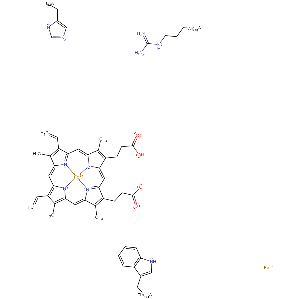 Enzyme drawing model. M csa mechanism and