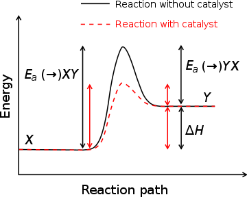 Enzyme drawing activation energy. Wikipedia the free encyclopedia