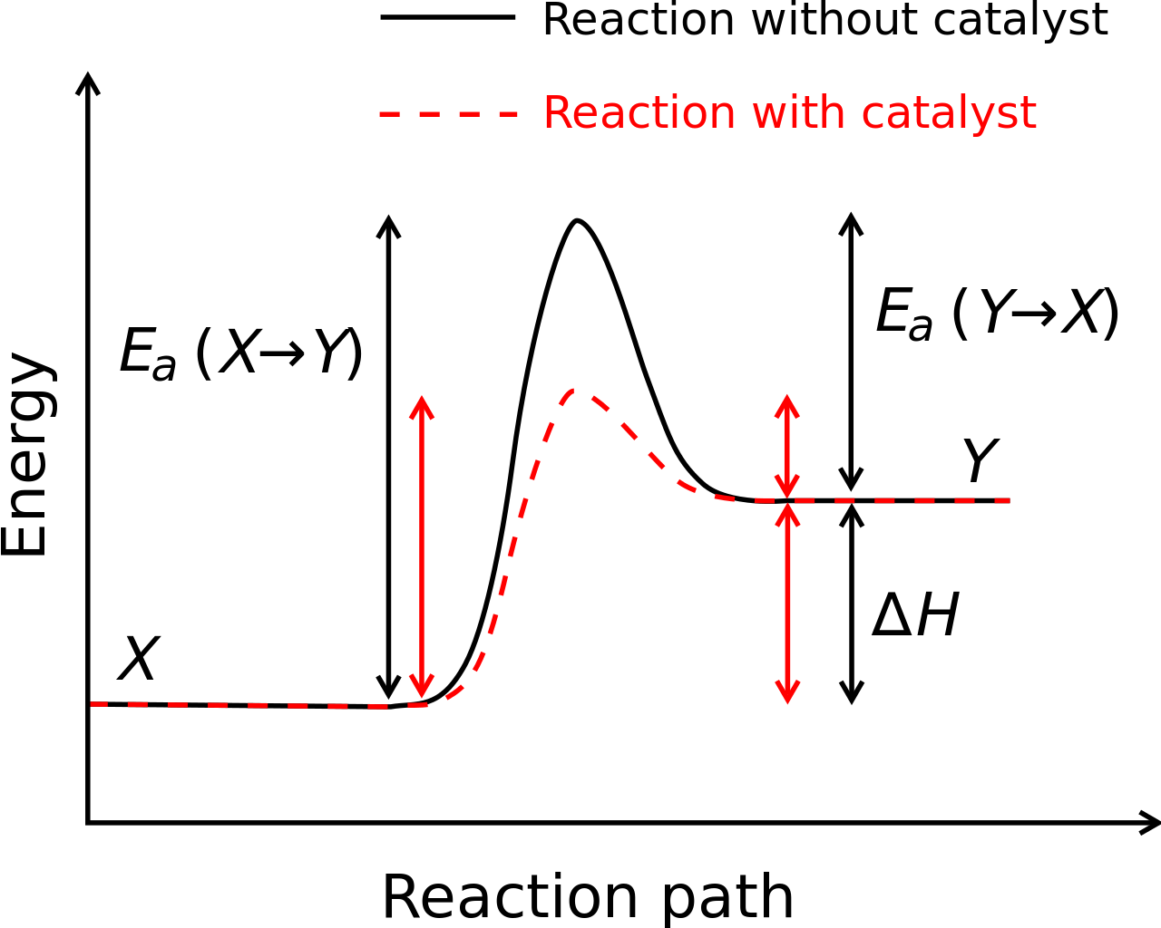 Enzyme drawing activation energy. Physical chemistry how to