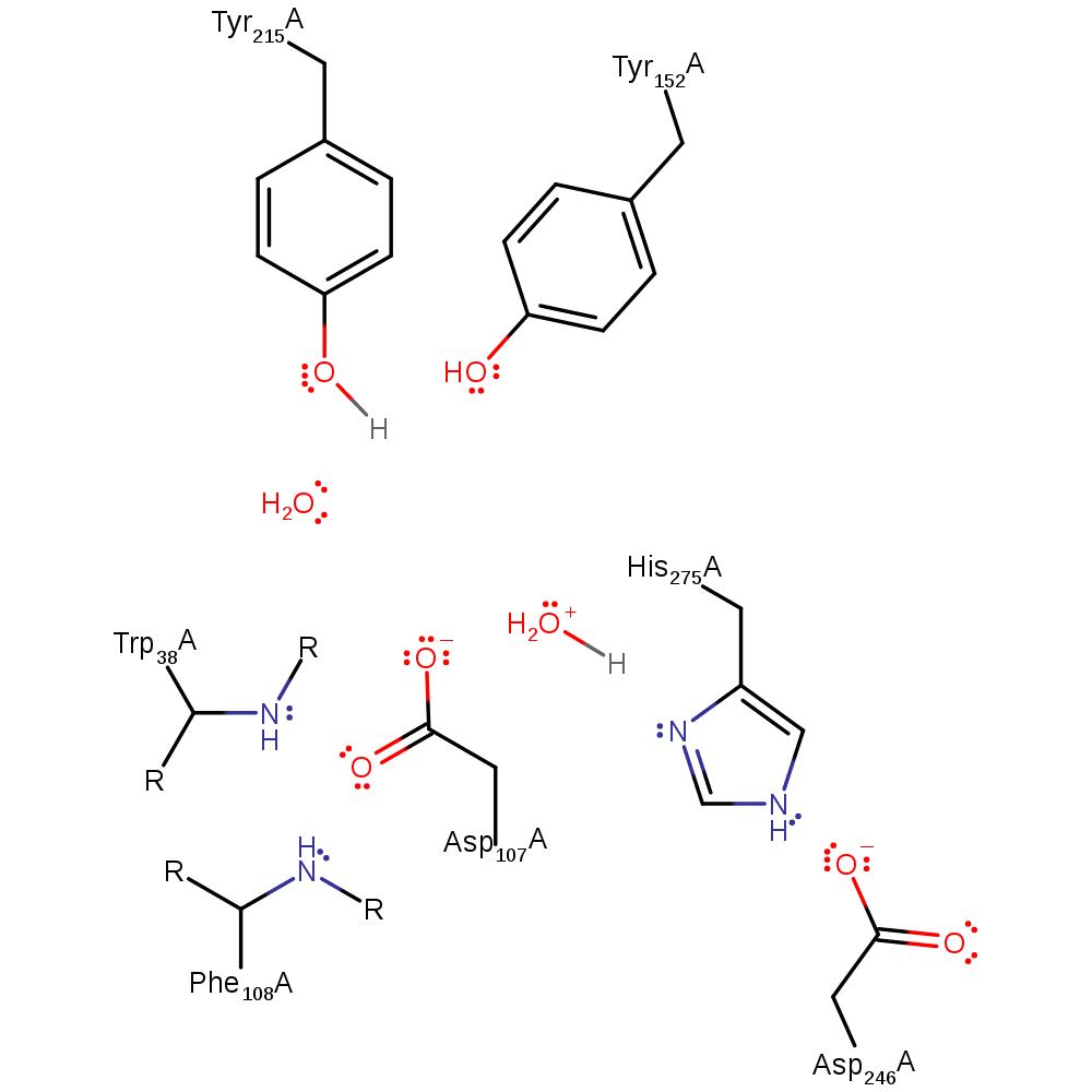 Enzyme drawing real life. M csa mechanism and