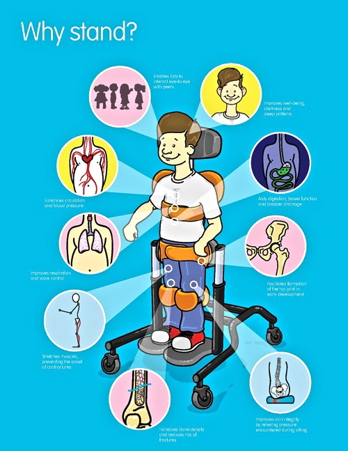 Equipment clipart physical therapy equipment. Best intervention ideas
