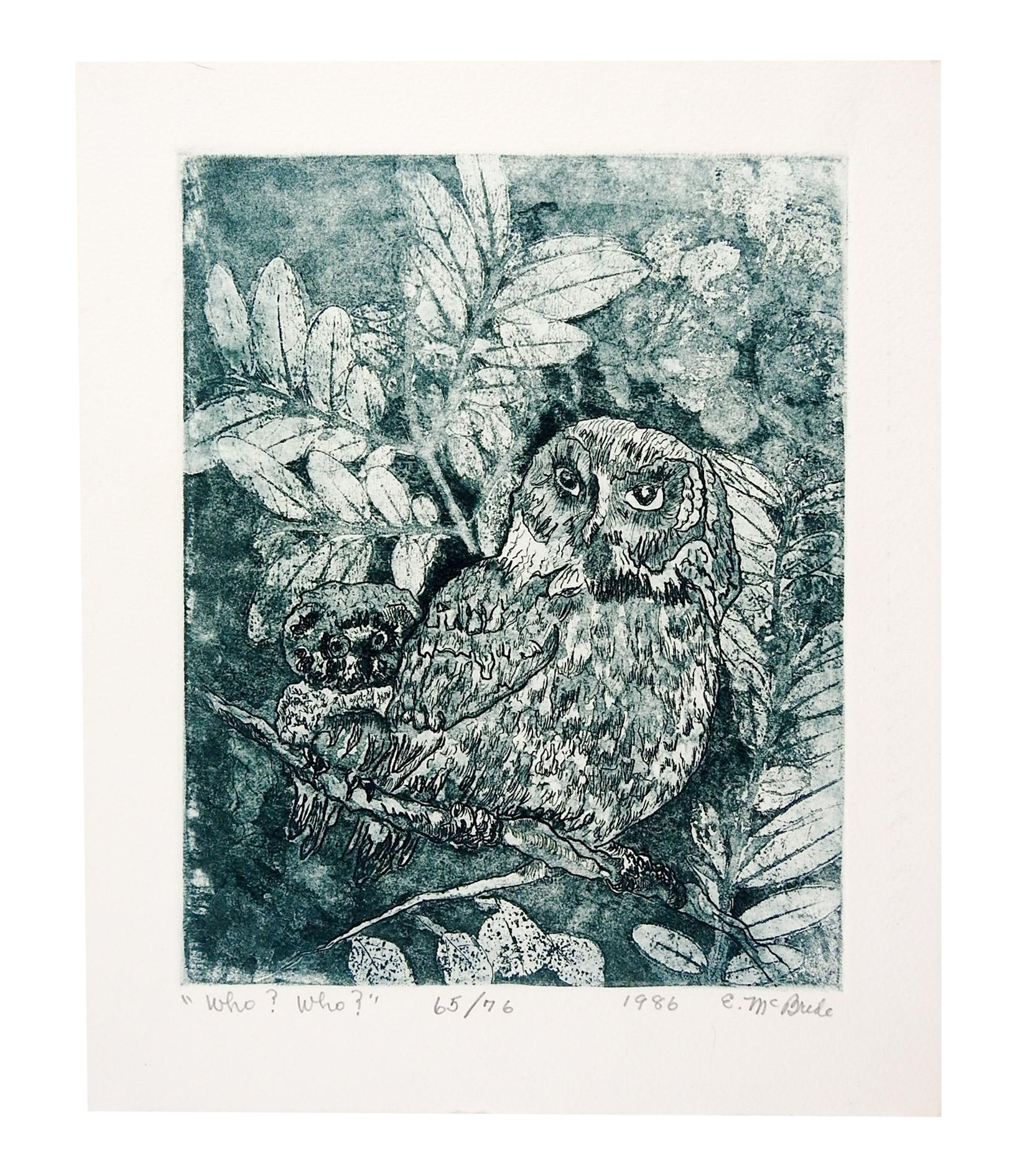 Etching drawing feather. E mcbride owls