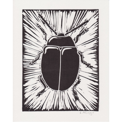 Etching drawing scratch art. Beetle lino print by