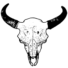 Etching drawing skull. Collection of free buffalo