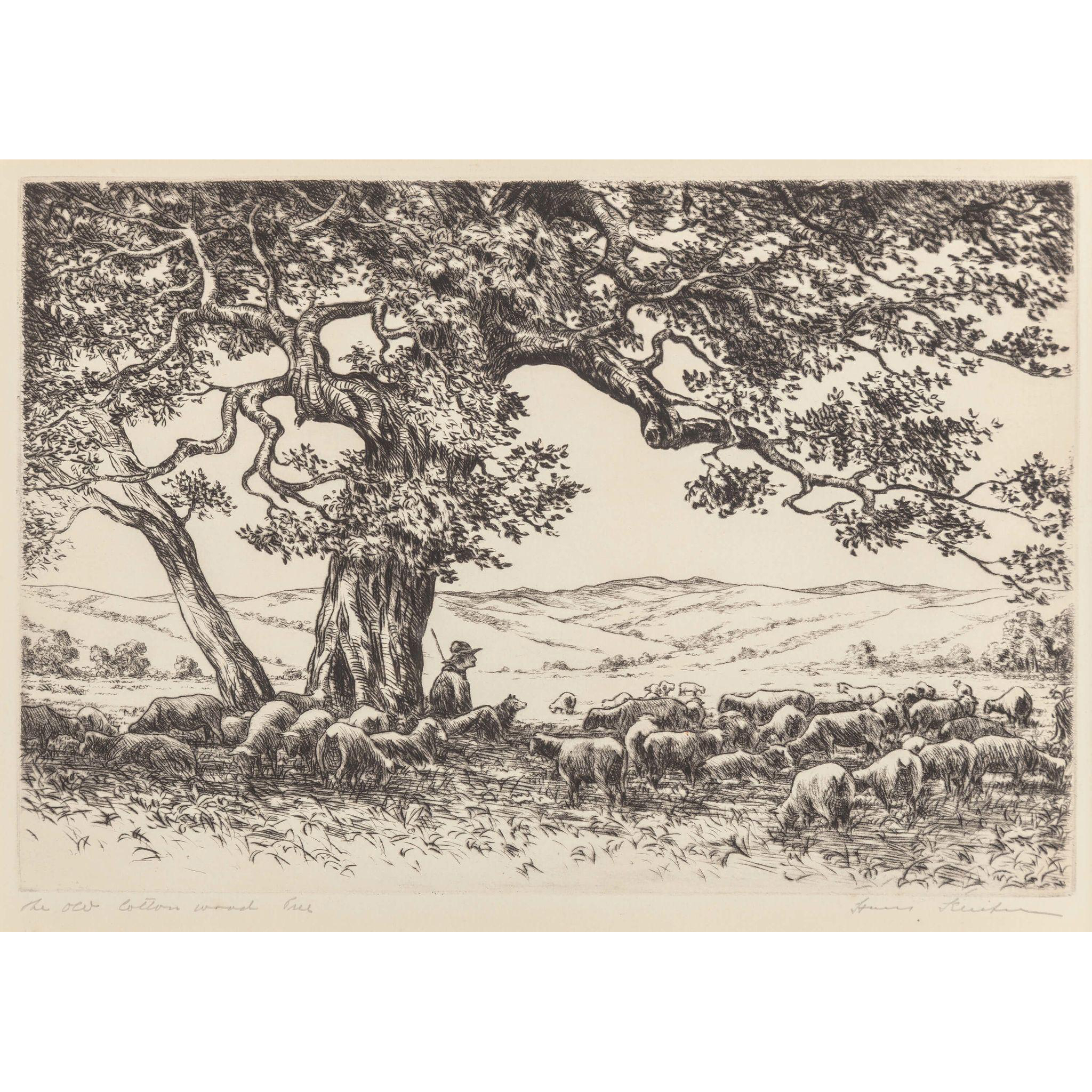 Etching drawing tree. Hans kleiber german american