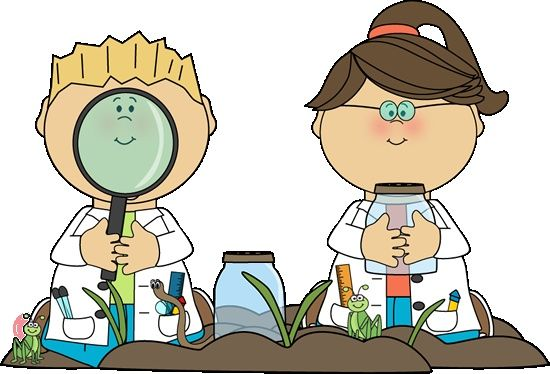 evaluation clipart discovery