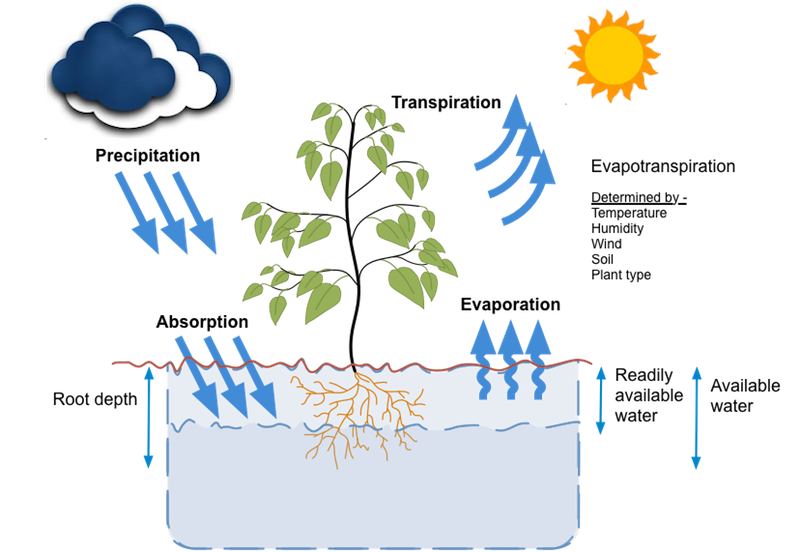 Evaporation drawing precipitation. Smart watering hydrawise will