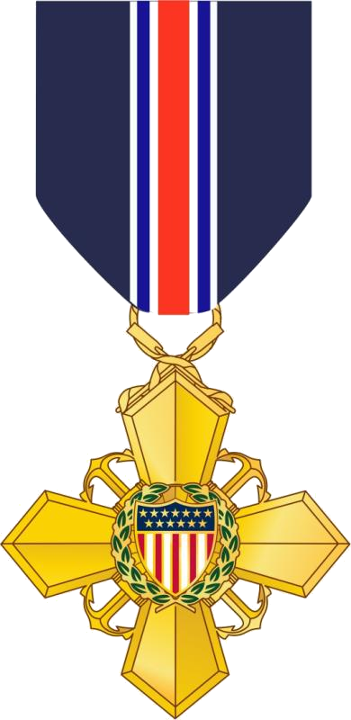medals drawing war medal