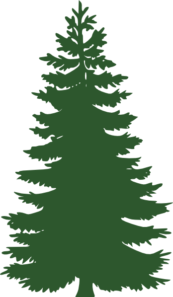 evergreen clipart forrest tree