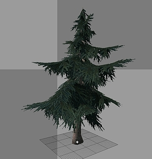 Evergreen clipart deodar tree. Forester pro template catalog
