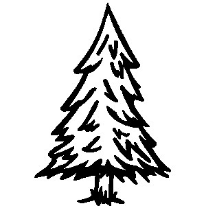 Evergreen clipart fir tree. Black and white animehana