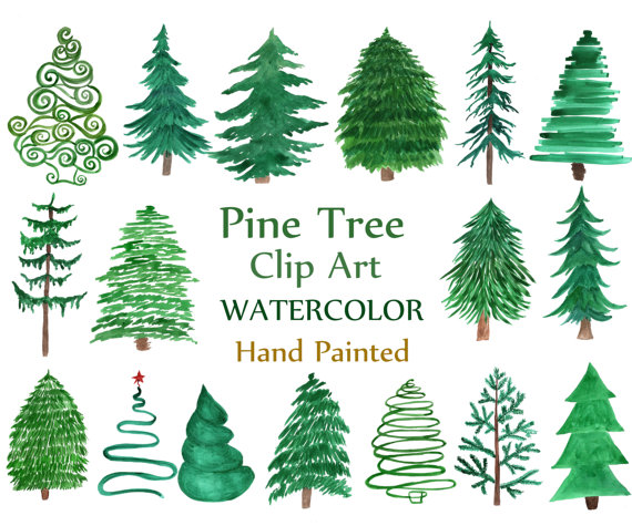Evergreen clipart fir tree. Watercolor pine trees christmas