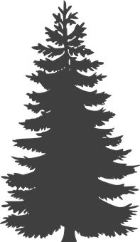 Evergreen clipart fir tree. Pine silhouette clip art