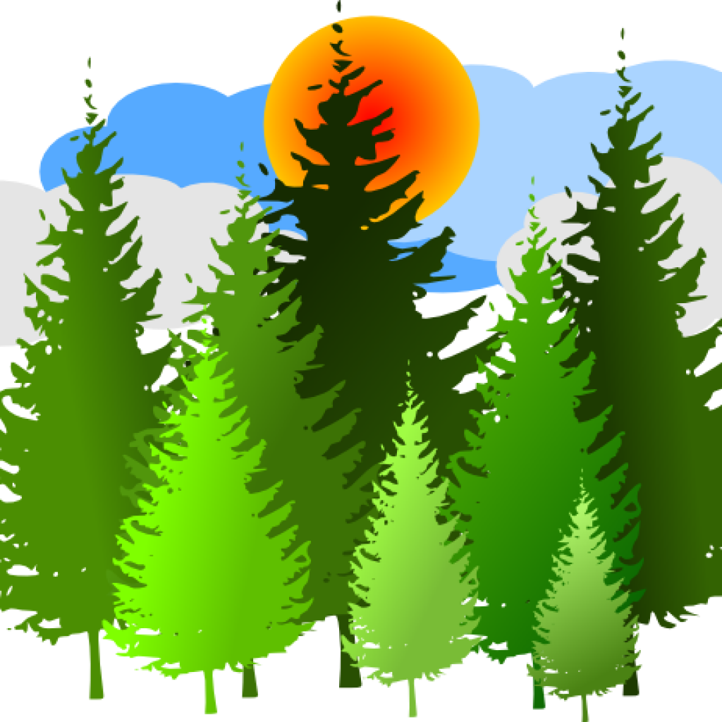 Free download trees. Forest clipart forest border svg freeuse stock