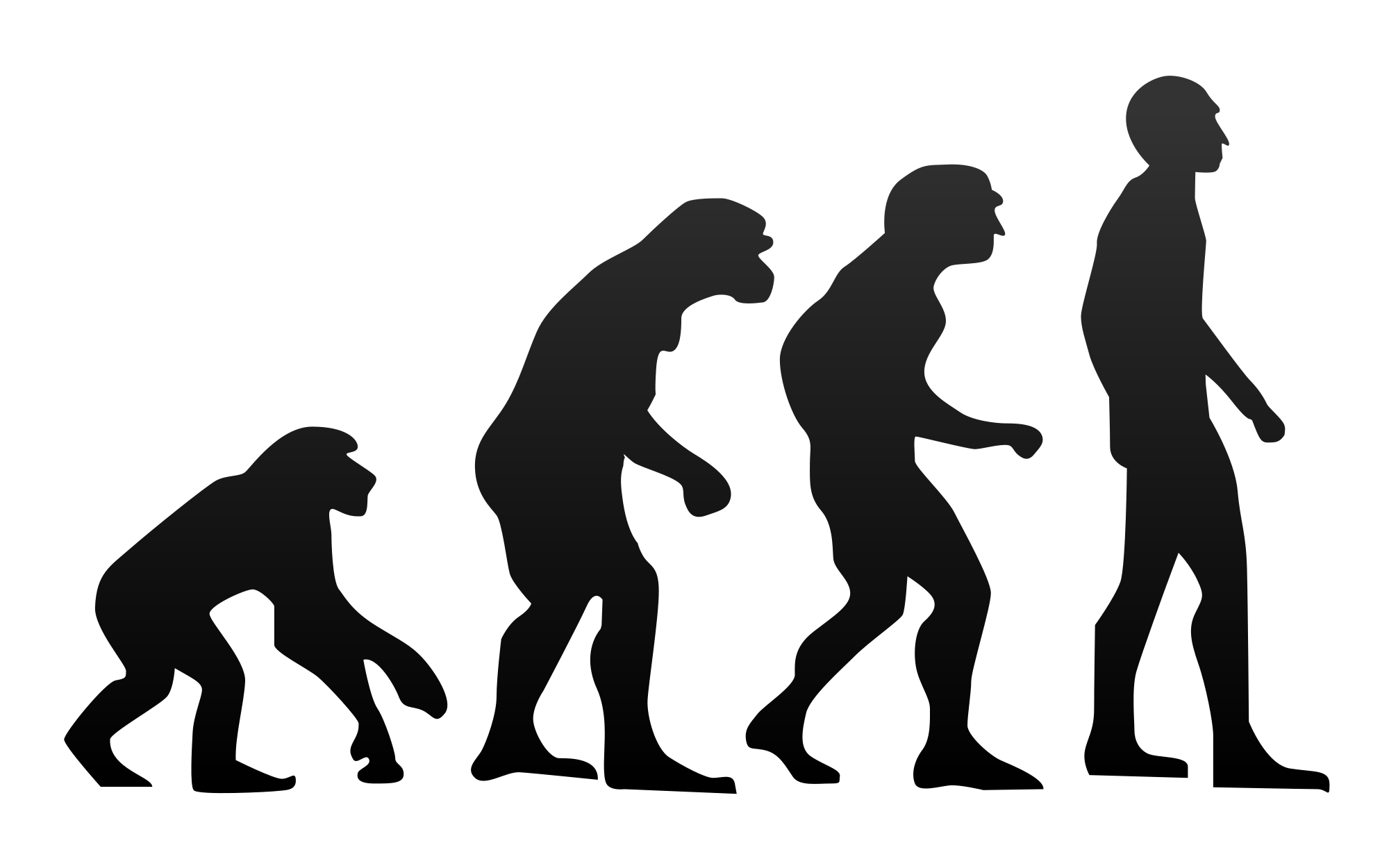 Evolution transparent silhouette. File human svg wikimedia
