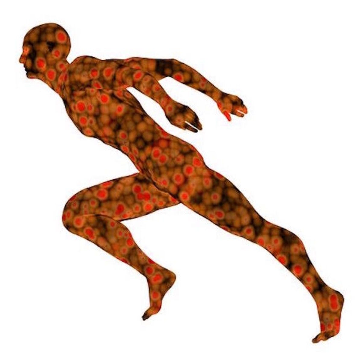 Exercise clipart exercise science. Of coursera