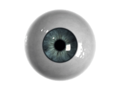 Single transparent stickpng people. Eyeball png jpg black and white