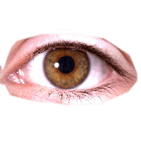 Eye png male. Download free photo images