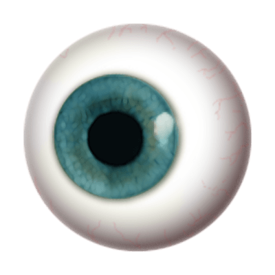Transparent eye png. Globe stickpng