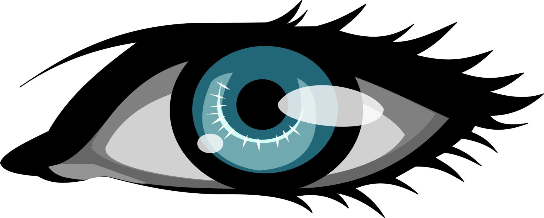 Eye clip human. Computer icons eyebrow download
