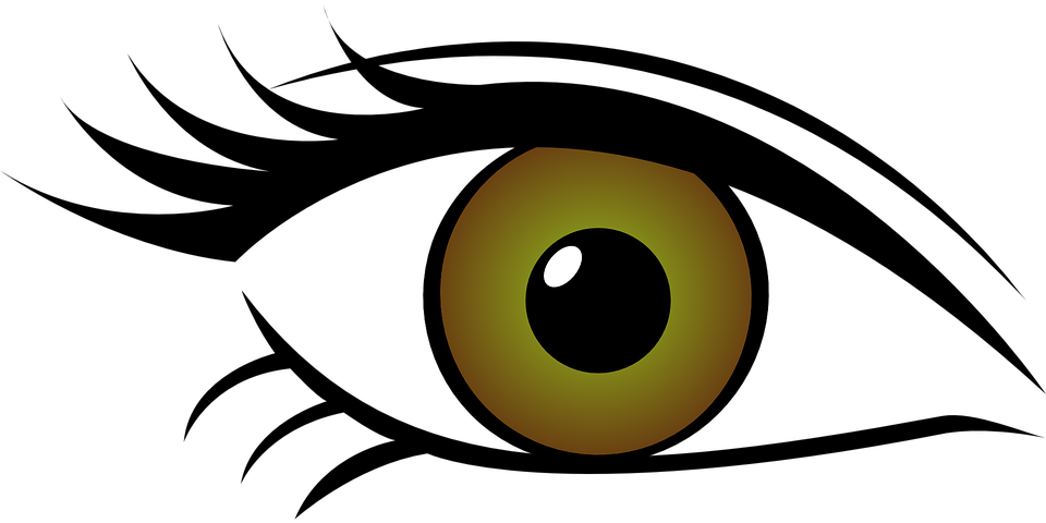 Vector eyeball mata. Graphic library kind
