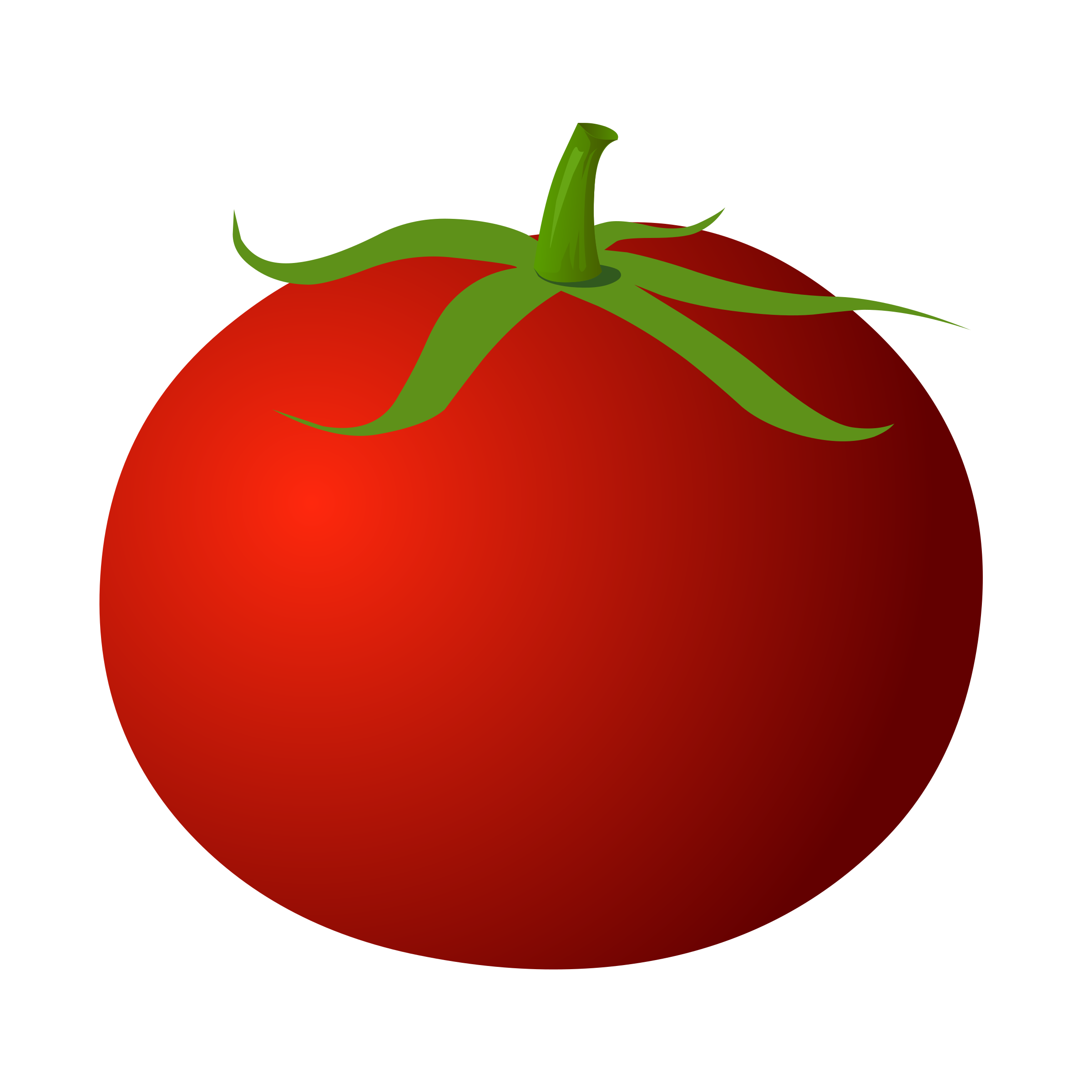 Eye clipart tomato. Tomatoes clip art free