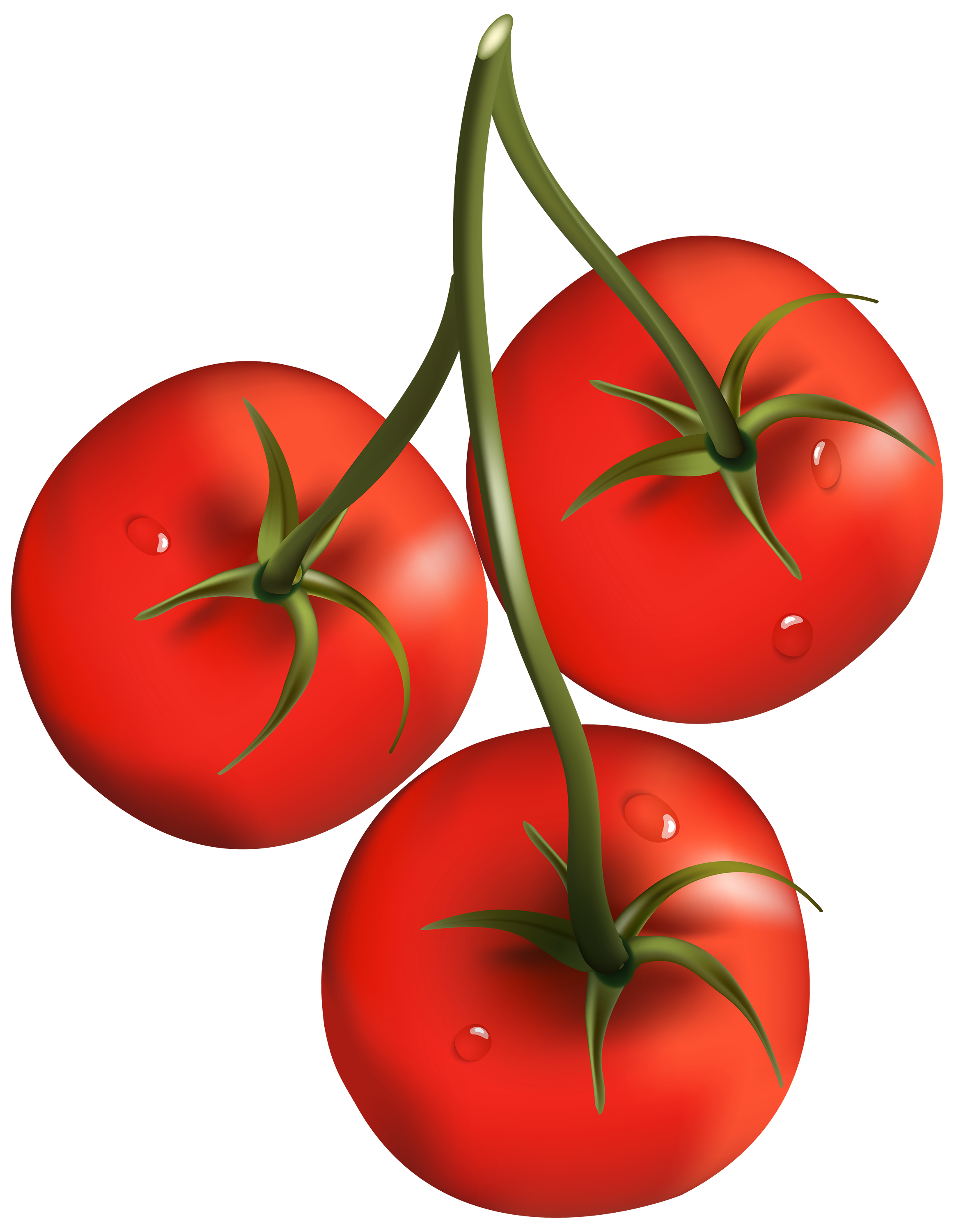 Eye clipart tomato. Png images free download