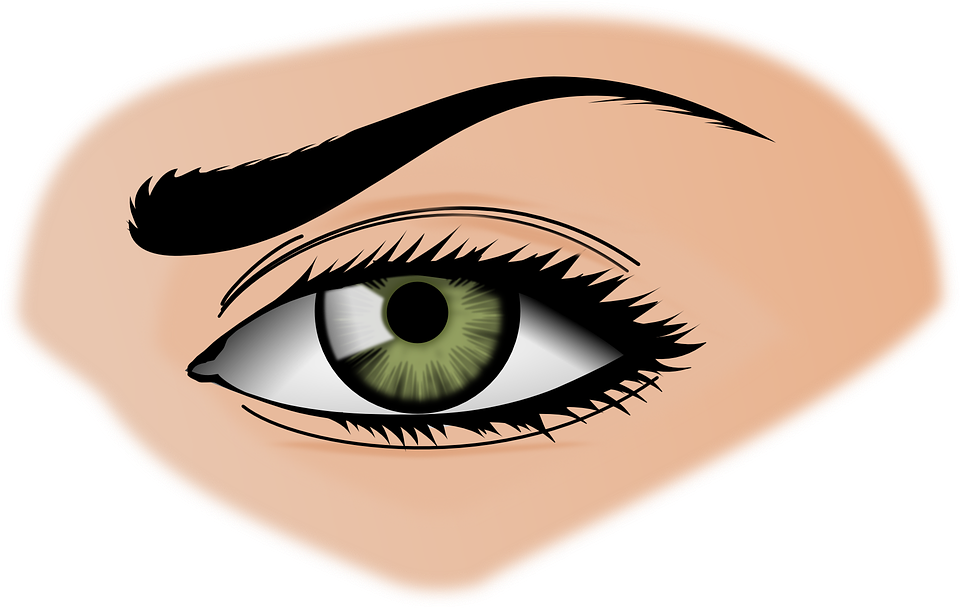 eyelash vector png