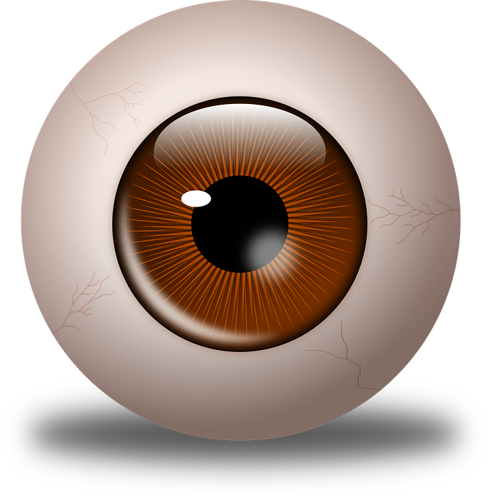 Eye clipart orange. Eyeball child clip arts