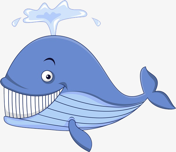 Eye clipart whale. S gaze concentration png