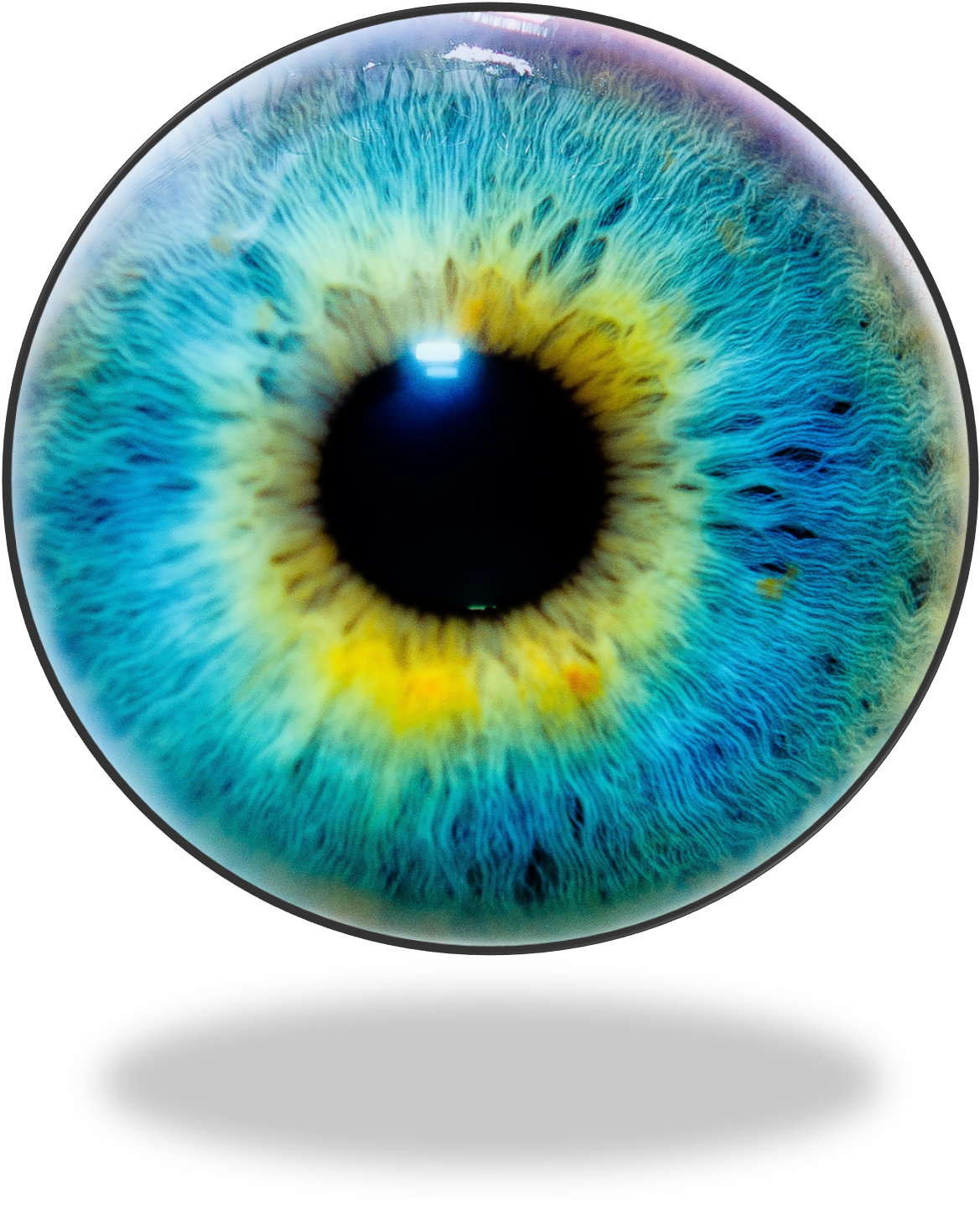 Eye lens png. Human iris recognition color