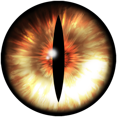 Eyes png. Hd transparent images pluspng clip art freeuse stock