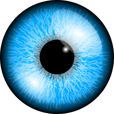 Eyeball png. Google dlpng pinterest eye