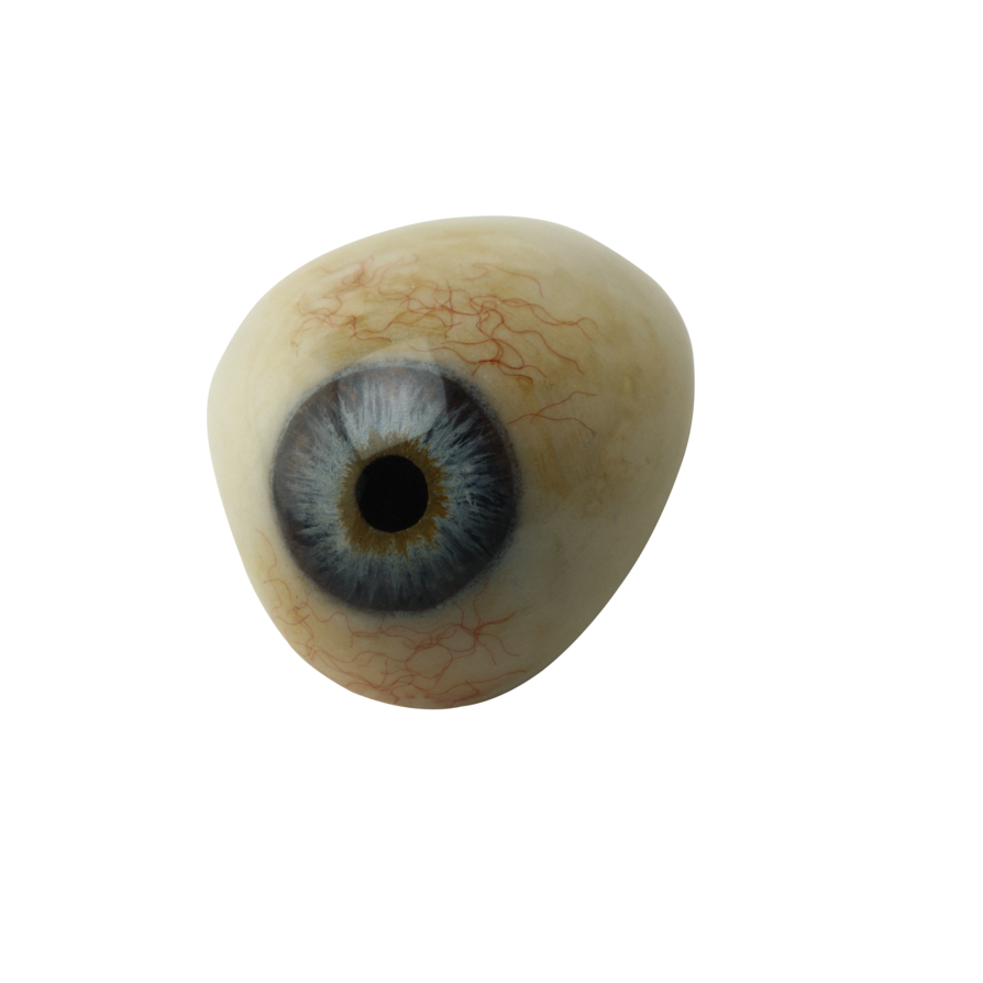 Transparent eye png. By absurdwordpreferred on deviantart