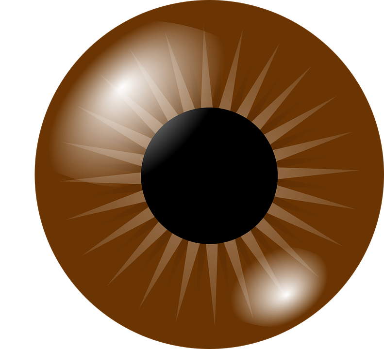 Trippy vector eye. Pupil png hd transparent