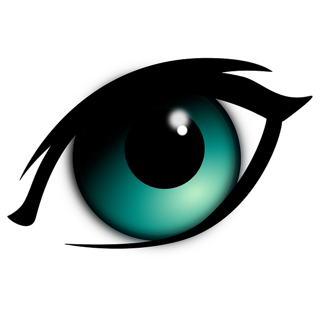 Eyebrow clipart blue eye. Free image on pixabay