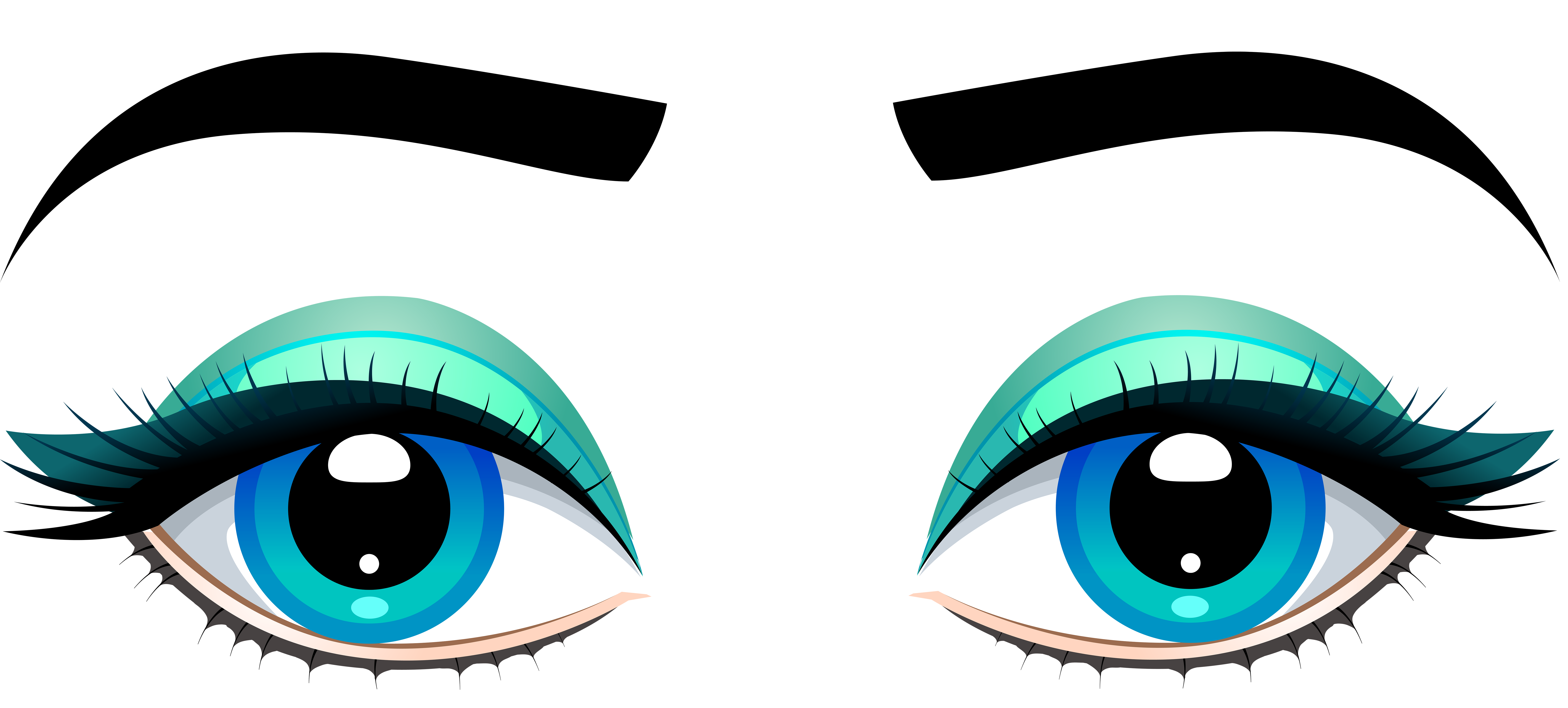 Female eyes with eyebrows. Eyebrow clipart blue eye graphic library stock