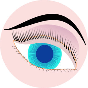 Eyebrow clipart blue eye. Clip art at clker
